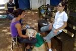 hippoterapia e petterapia (136)