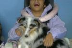 hippoterapia e petterapia (18)